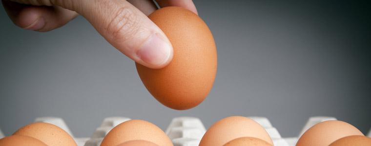 consejos consumo de huevos