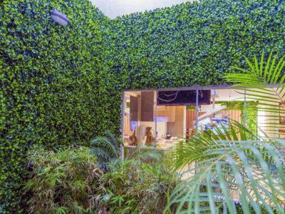 ¿Te gustaría tener un jardín vertical? Esto es lo que debes saber