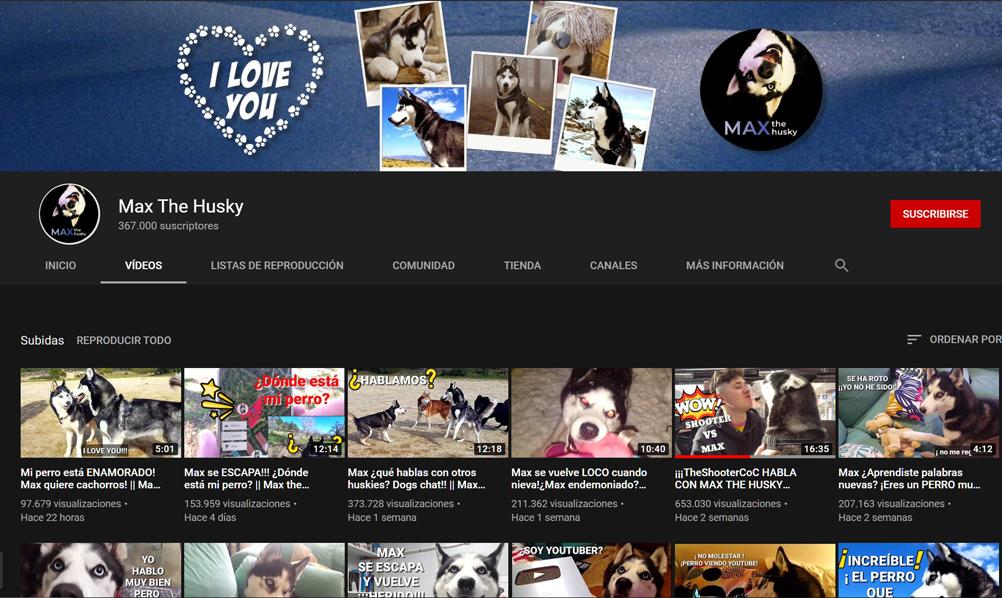 Max the husky, el perro youtuber que habla