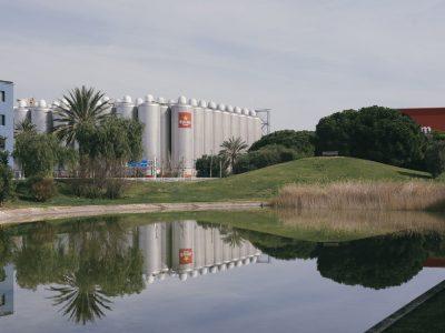 Damm reafirma su compromiso por el medioambiente con las latas más sostenibles