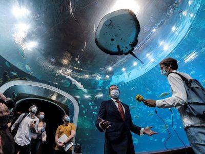 El gran acuario Poema del Mar reabre sus puertas al público tras más de 13 meses de cierre