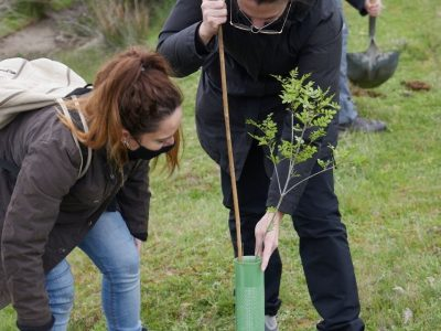 La firma de joyas Bombay Sunset planta un bosque de más de 400 árboles para compensar su huella de carbono