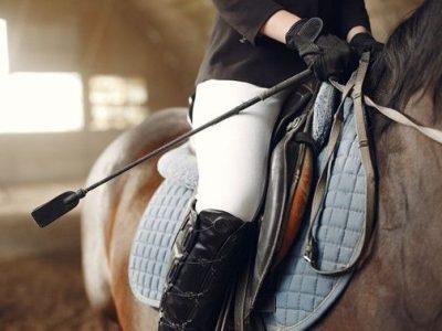Equipamientos imprescindibles para la equitación
