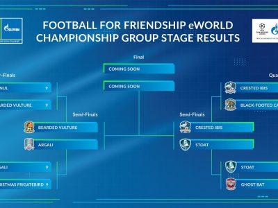 El campeonato del mundo en línea Football for Friendship: Jugadores de más de 200 países compiten en equipos mixtos