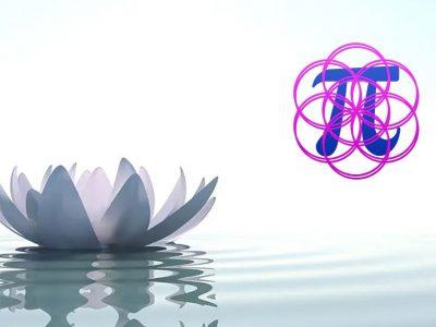 Las terapias holísticas y sus beneficios por El Alma de Almu